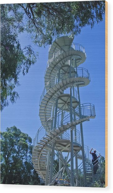 Perth Kings Park Double Helix Dna Tower  Wood Print