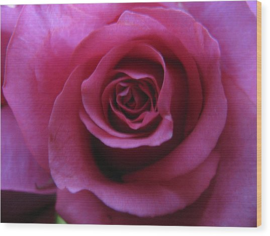 Petals Xxix Wood Print
