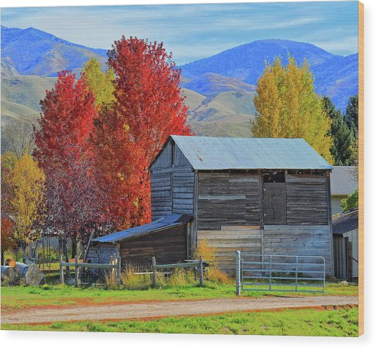 Peterson Barn In Autumn Wood Print
