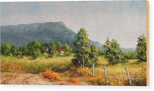 Petit Jean Mountain Wood Print