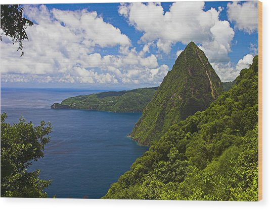 Petite Piton From Gros Piton-st Lucia Wood Print