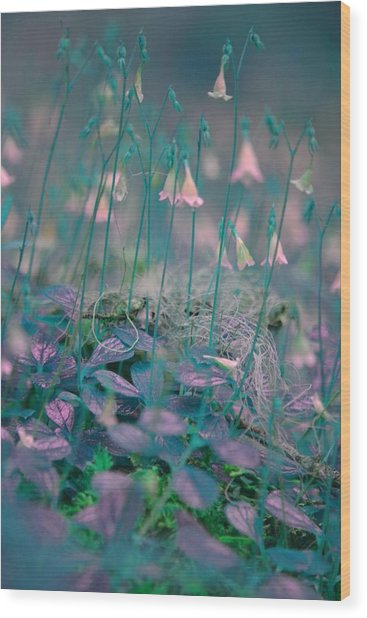 Petites Fleurs Wood Print