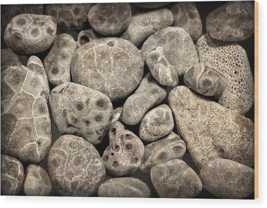 Petoskey Stones Vl Wood Print