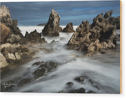 Petrel Cove Wood Print