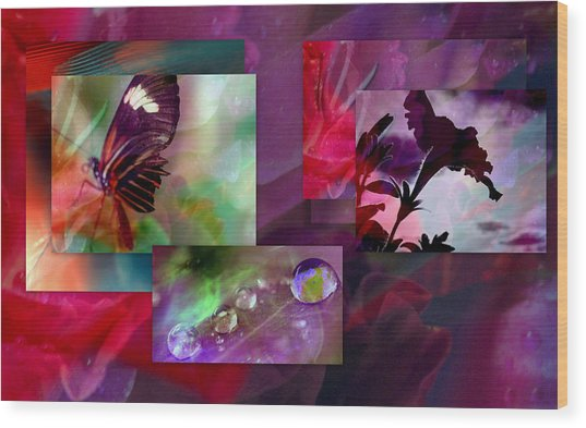 Petunia Collage Wood Print by Irma BACKELANT GALLERIES