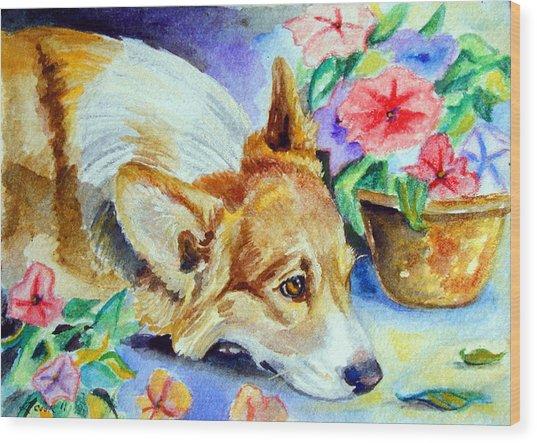 Petunias - Pembroke Welsh Corgi Wood Print