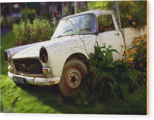 Peugeoted Wood Print by Jez C Self