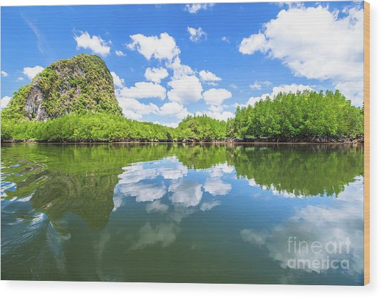 Phang Nga Bay Wood Print