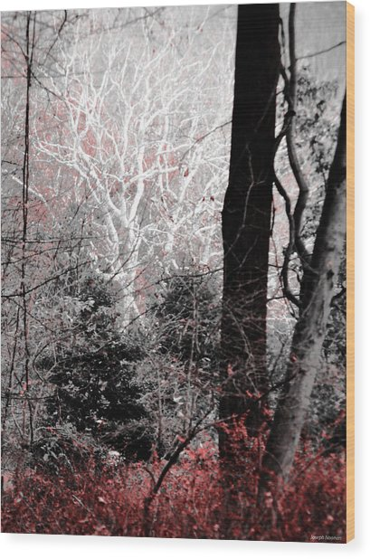 Phantasm In Wildwood Wood Print