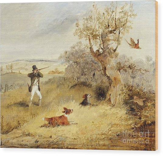 Pheasant Shooting Wood Print