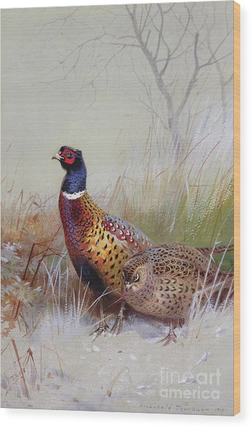 Pheasants In The Snow Wood Print