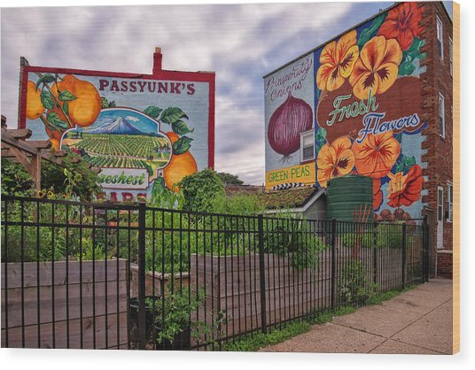Philadelphia Community Gardens Wood Print