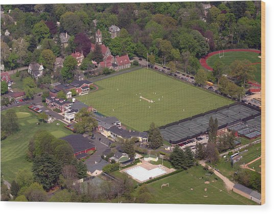 Philadelphia International Cricket Festival Wood Print