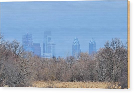 Philly From Afar Wood Print