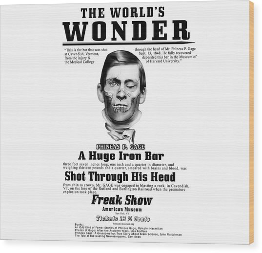 Phineas Gage World's Wonder Wood Print