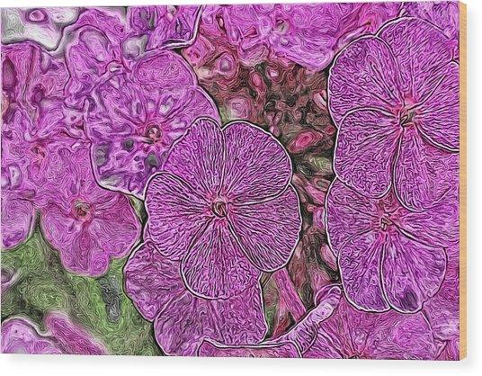 Phlox Wood Print