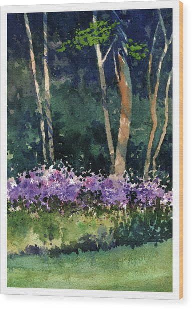 Phlox Meadow, Harrington State Park Wood Print