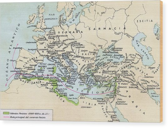 Phoenician Colonies And Area Of Wood Print