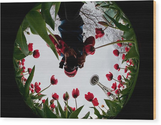 Photographer In Wonderland H084 Wood Print by Yoshiki Nakamura