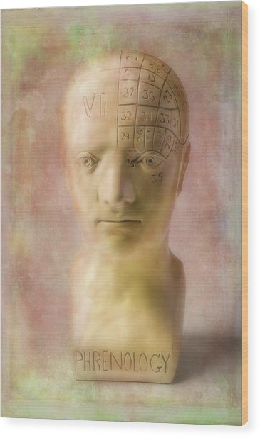 Phrenology Head Wood Print