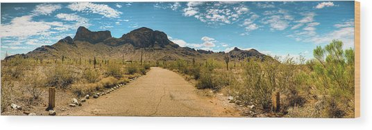 Picacho Peak State Park Panorama Wood Print