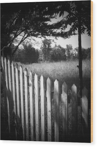 Picket Fence Landscape Wood Print by Michael L Kimble