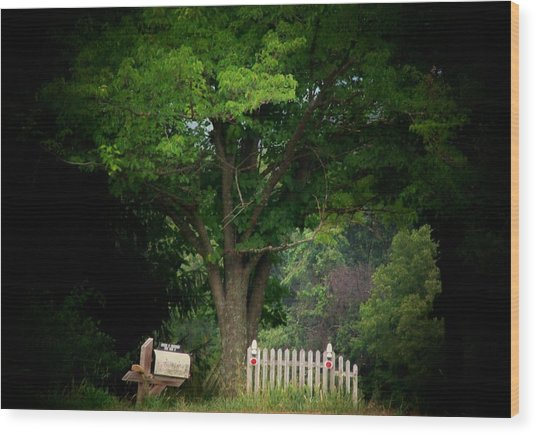Picket Fence Mailbox Wood Print by Michael L Kimble