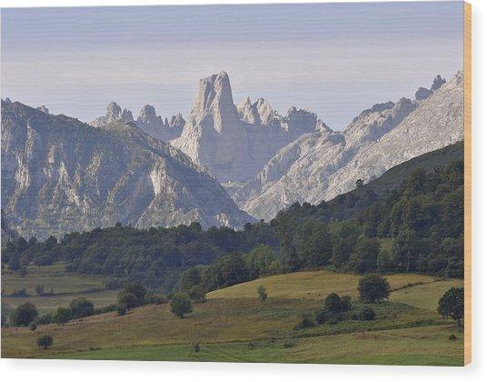 Famous Peak Wood Print