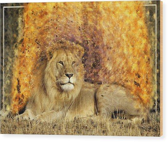 Pieces Of A Lion Wood Print
