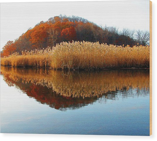 Piermont Backwater Wood Print