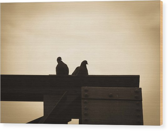 Pigeon And Steel Wood Print