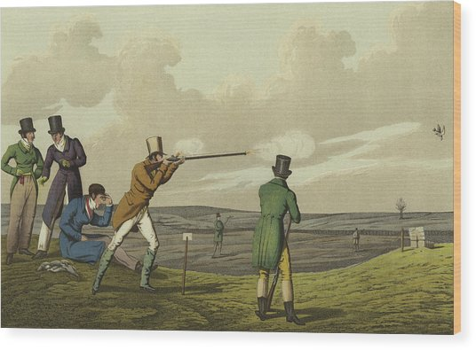 Pigeon Shooting Wood Print