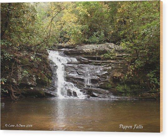 Pigpen Falls Oconee County Sc Wood Print by Lane Owen