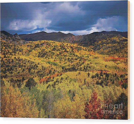 Pikes Peak Autumn Wood Print