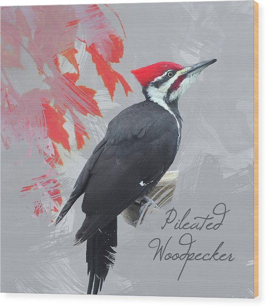 Pileated Woodpecker Watercolor Photo Wood Print