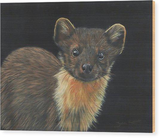 Pine Marten Wood Print