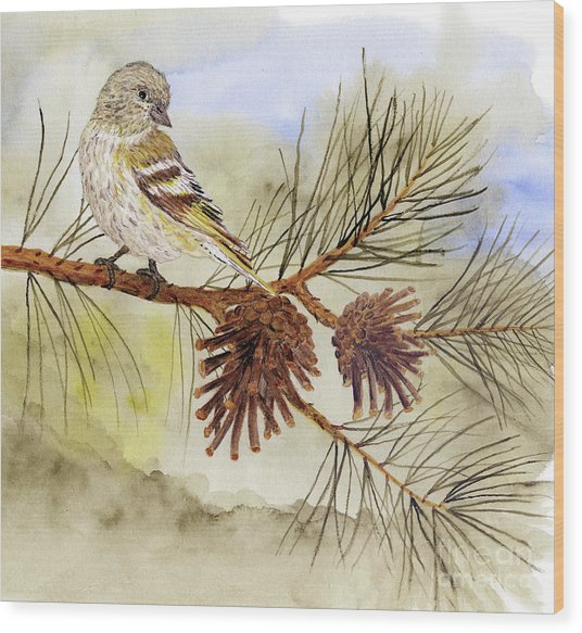 Pine Siskin Among The Pinecones Wood Print