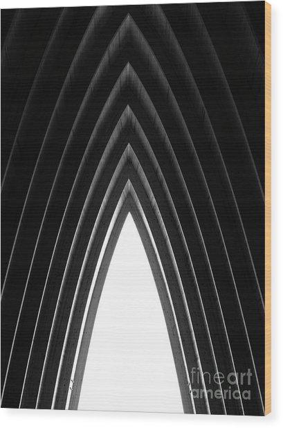 Pine Wood Print by Tapio Koivula