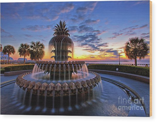 The Pineapple Fountain At Sunrise In Charleston, South Carolina, Usa Wood Print