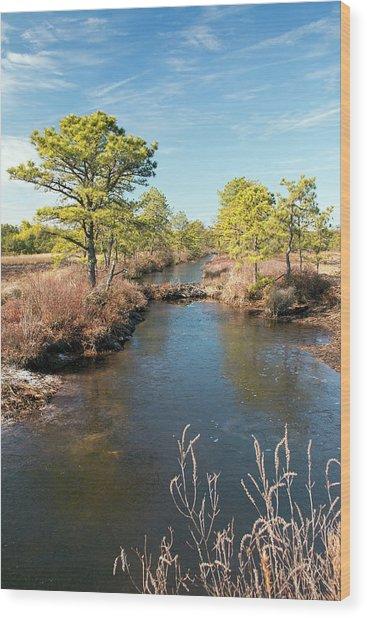 Pinelands Water Way Wood Print
