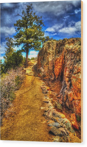 Ponderosa Pine Guarding The Trail Wood Print