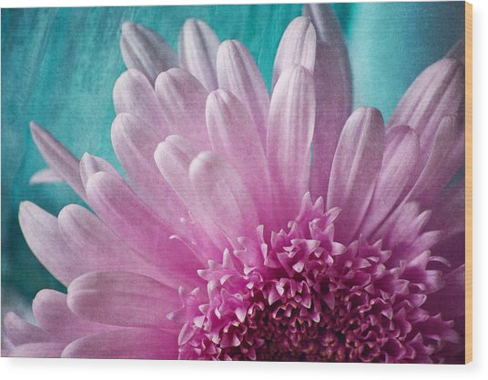 Pink And Aqua Wood Print