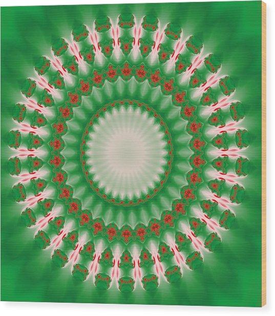 Pink And Green Mandala Fractal 005 Wood Print