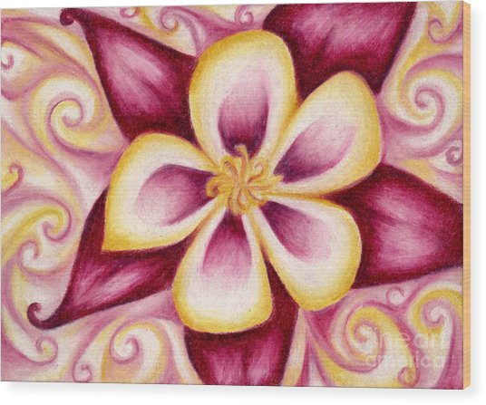 Pink And Yellow Columbine Flower Drawing Wood Print