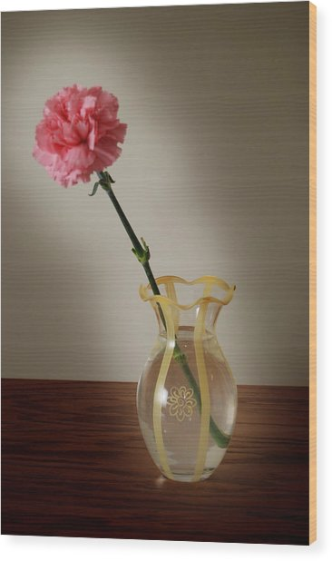 Pink Carnation Wood Print by Dave Chafin