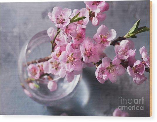 Pink Cherry Blossom Wood Print