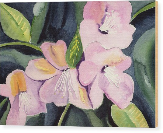 Pink Dancing Flowers Wood Print by Janet Doggett