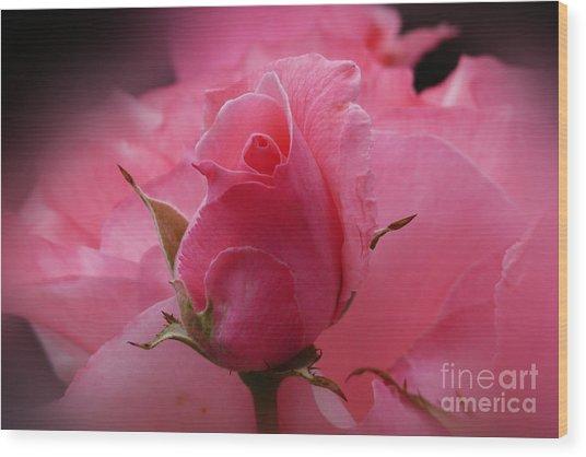 Pink Dream Wood Print by Lutz Baar