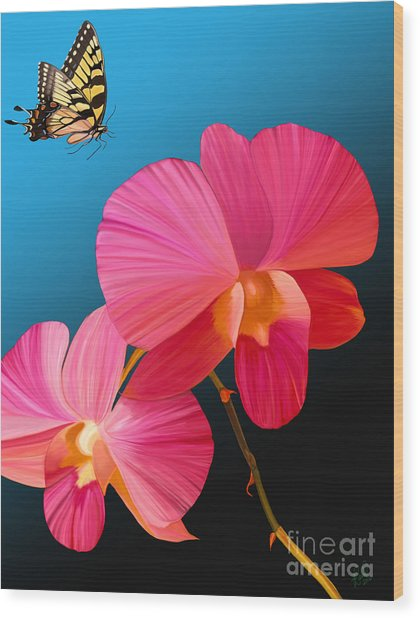 Pink Lux Butterfly Wood Print