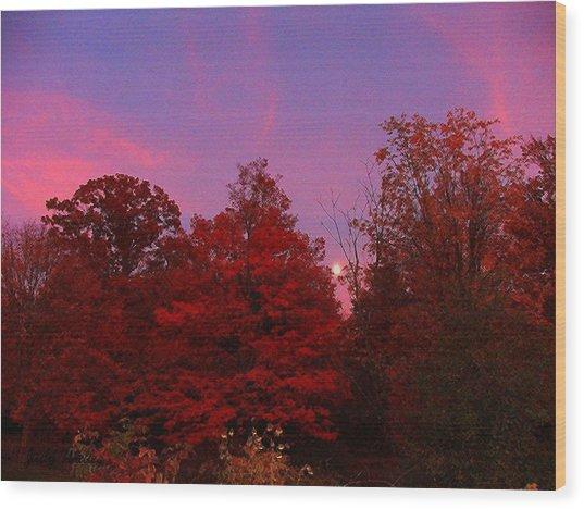 Pink Moonlite Night Wood Print by Judy  Waller